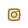instergram icon